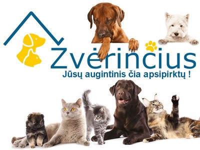 www.zverincius.lt